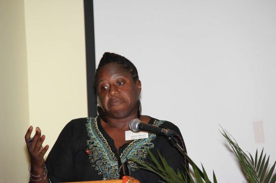 Panel presentation, Canada 2011