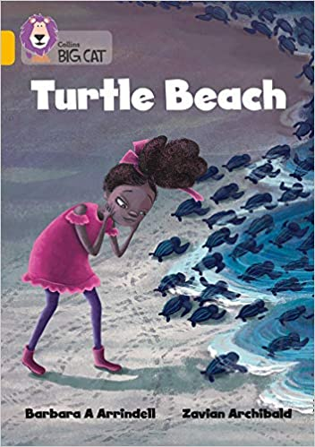 This image has an empty alt attribute; its file name is turtle-beach.jpg